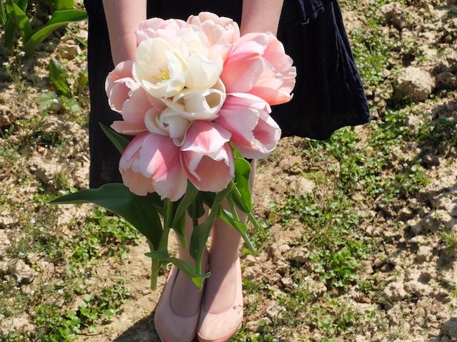 tulipes-contre-cancer