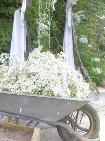 idee-photobooth-vegetal